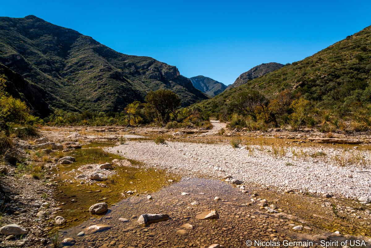 Ruisseau à traverser dans la première partie de McKittrick Canyon, Guadalupe Mountains