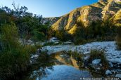 Ruisseau peu profond dans McKittrick Canyon, Guadalupe Mountains