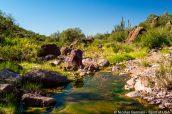 Petit ruisseau dans Alamo Wash à Alamo Canyon, Organ Pipe Cactus