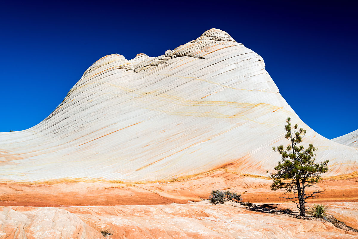 White Domes dans les Canaan Mountains, Utah