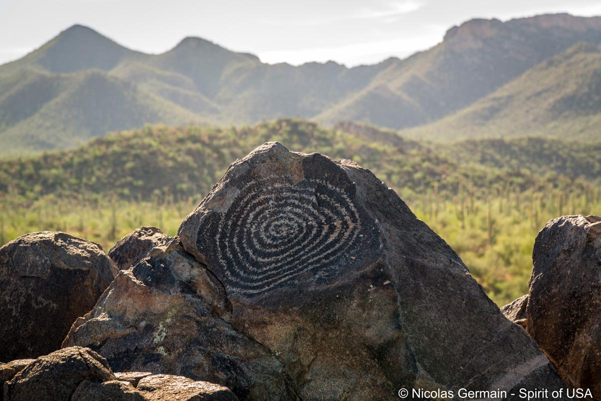 Pétroglyphe à Signal Hill, Saguaro West