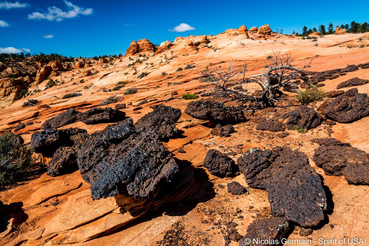 Roches volcaniques à Black Rocks, au-delà de White Domes