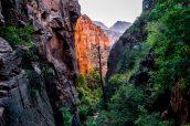 Descente vers Water Canyon en milieu d'après-midi après la visite de White Domes