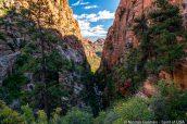 Falaises de Water Canyon et couleurs de début d'automne, en direction de Top Rock