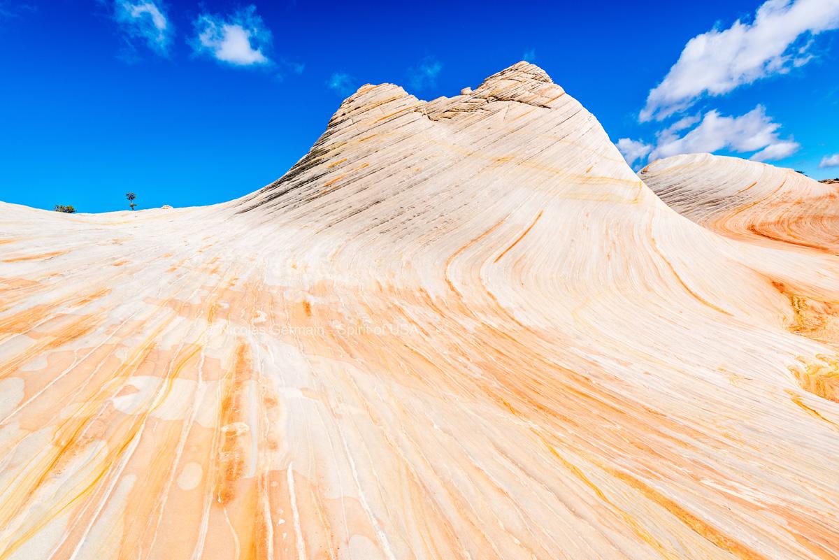 Vagues et monticules de White Domes, Canaan Mountain