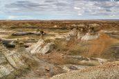 Vue sur plusieurs hoodoos au milieu de Burnham Badlands, Nouveau-Mexique