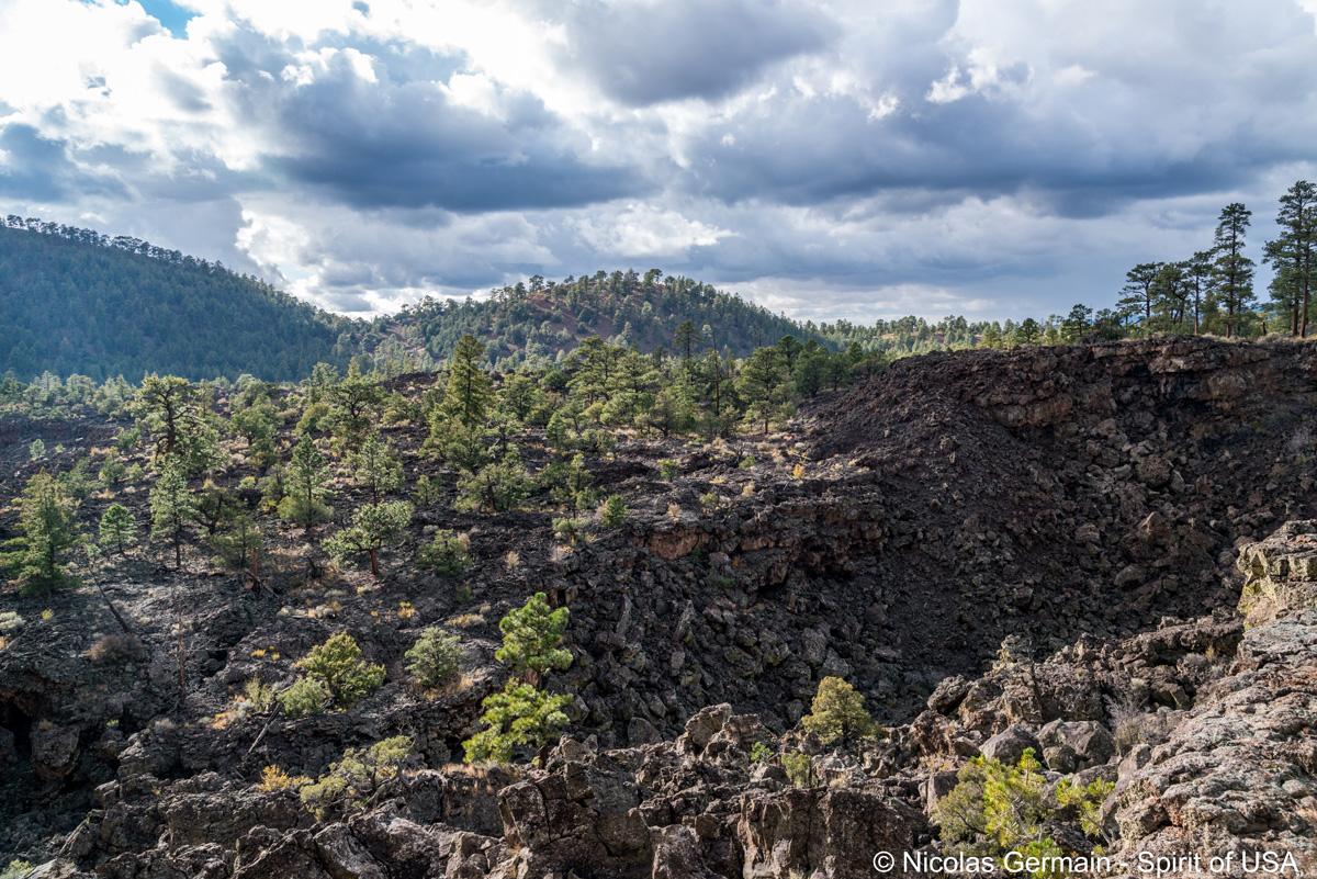 Paysage de lave solidifiée le long du sentier vers Bandera Volcano