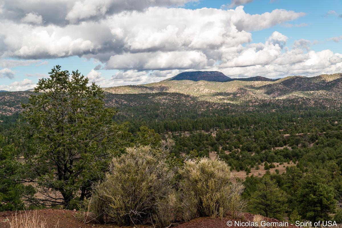Paysage vu du sentier de El Calderon, El Malpais
