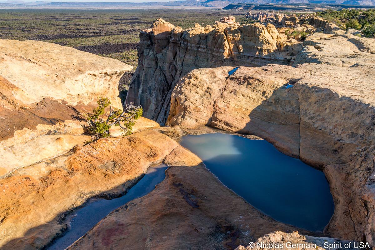 On trouve quelques ornières remplies périodiquement d'eau sur les falaises de Sandstone Bluffs, El Malpais
