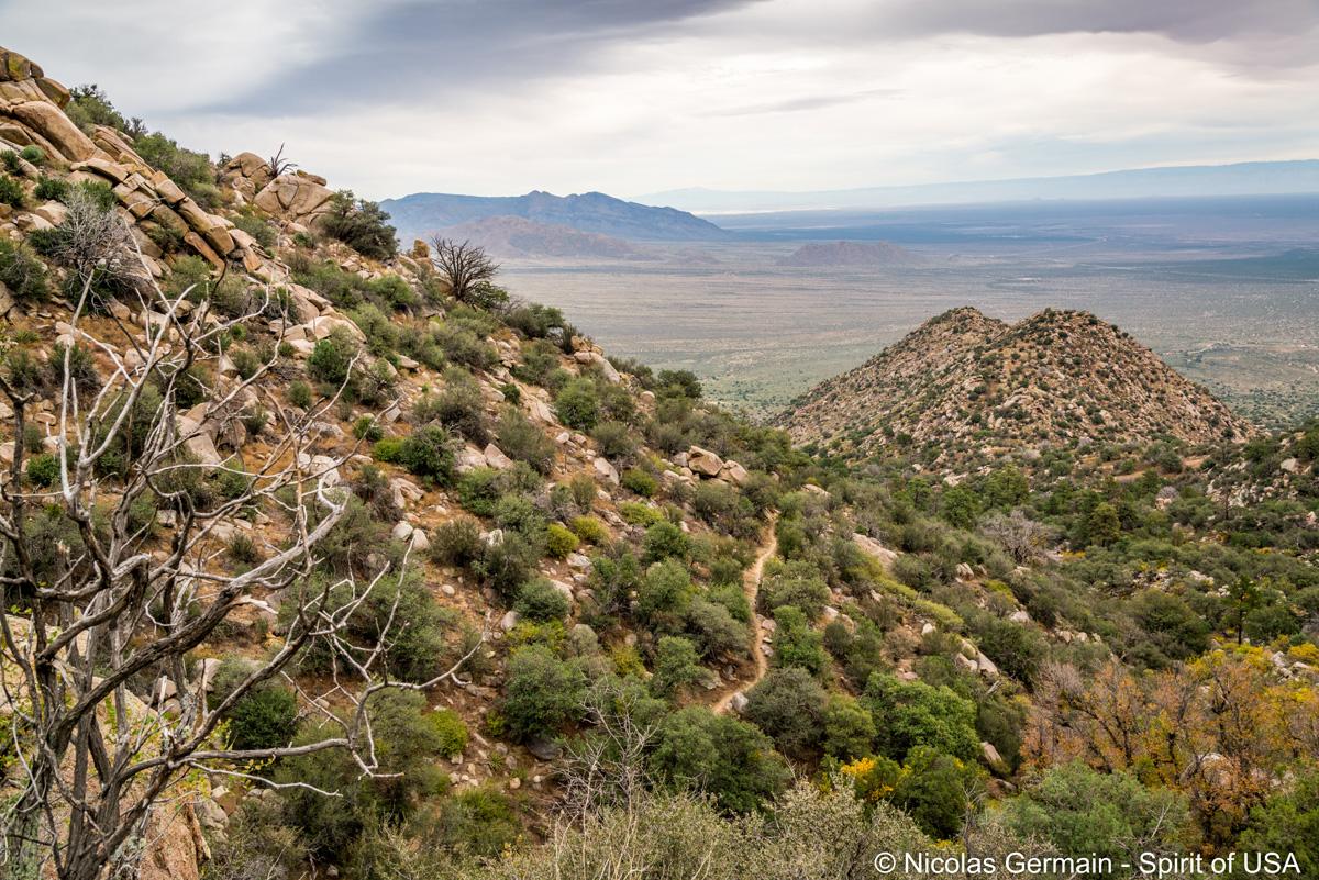 Vue sur les plaines désertiques du Nouveau-Mexique et le sentier Pine Tree Loop, Organ Mountains