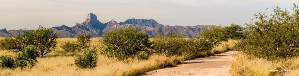 Vue sur le Boboquivari et les plaines alentours le long de la piste Pronghorn Drive à Buenos Aires National Wildlife Refuge