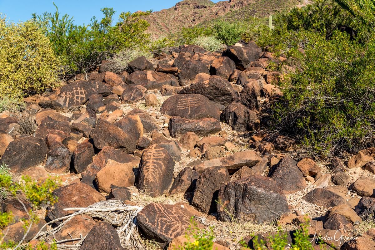 Pétroglyphes à Charlie Bell Pass dans Cabeza Prieta