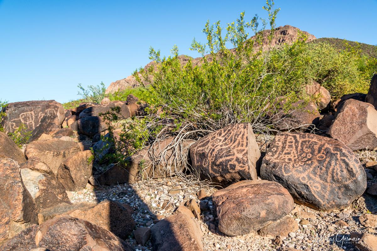 Pétroglyphes datant d'il y a près de 10 000 ans à Charlie Bell Pass, Cabeza Prieta