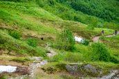 Deux randonneurs attendent qu'un ours noir s'écarte du sentier Harding Icefield Trail, Alaska