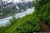Sentier Harding Icefield Trail et Exit Glacier, Kenai Fjords