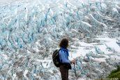 Le long dExit Glacier lors de la montée du sentier Harding Icefield Trail, Alaska