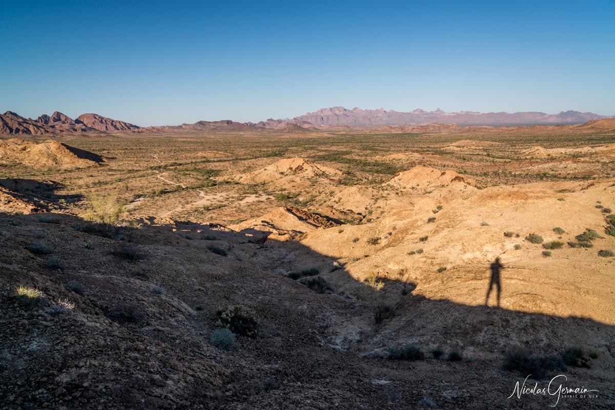 Panorama d'un petit promontoir sur l'immensité de Kofa National Wildlife Refuge dans la section King Valley