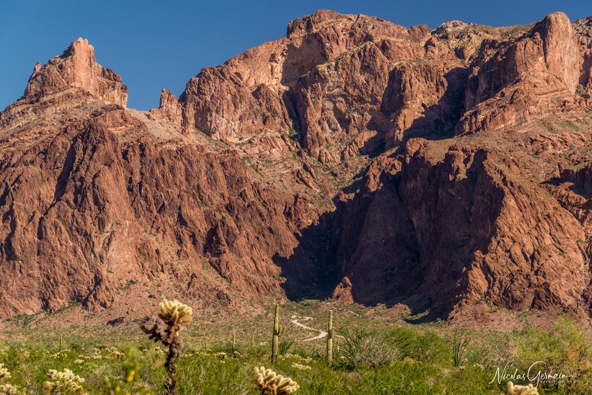 Palm Canyon Road, la piste menant au sentier de Palm Canyon dans Kofa National Wildlife Refuge