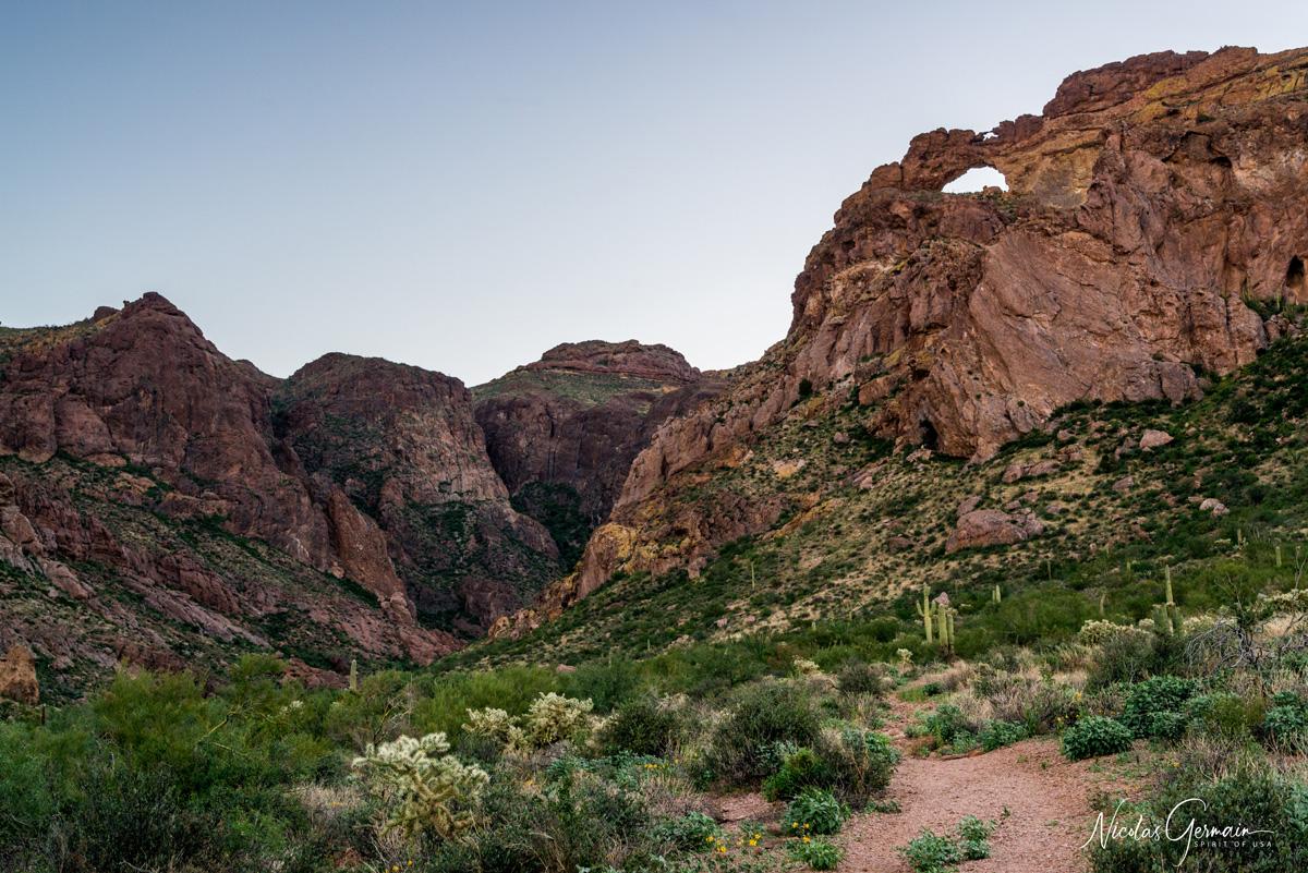 Arch Canyon le long d'Ajo Mountain Drive, Organ Pipe Cactus