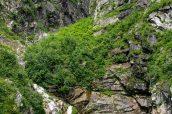 Une petite chute d'eau et l'eau émeraude de Tracy Arm, Alaska