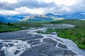 Paysage de Denali National Park, Alaska