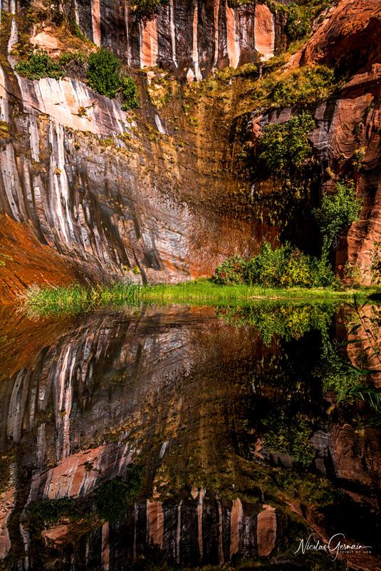 Reflet à Black Lagoon dans Coyote Gulch, Glen Canyon