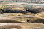Badlands jaunes et verts au début du sentier vers King of Wings, Nouveau-Mexique