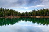 Clear Lake et ses eaux couleur vert émeraude près de Canyon Village, Yellowstone