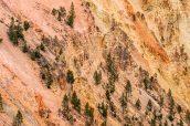 Détail de la roche très colorée sur les pentes du Grand Canyon de Yellowstone
