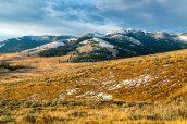 Le Mt Washburn enneigé au lever du soleil, Yellowstone National Park