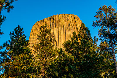 devils-tower-trail