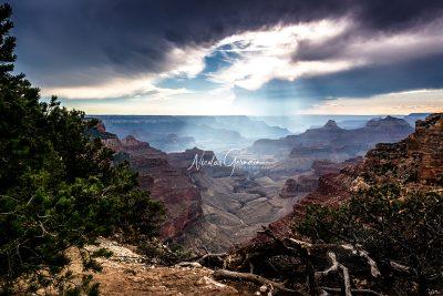 Grand Canyon, Cape Royal - Nicolas Germain, Spirit of USA