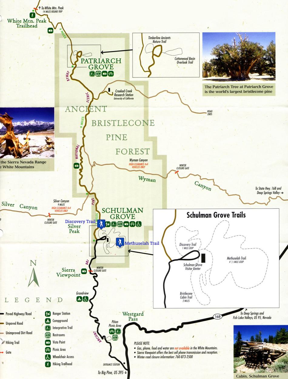 Carte d'Ancient Bristlecone Pine Forest